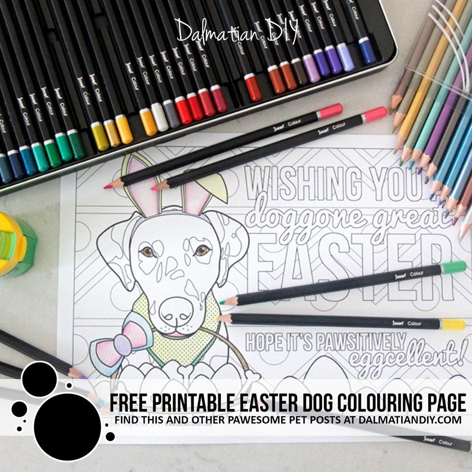 Free printable Easter bunny dog colouring page