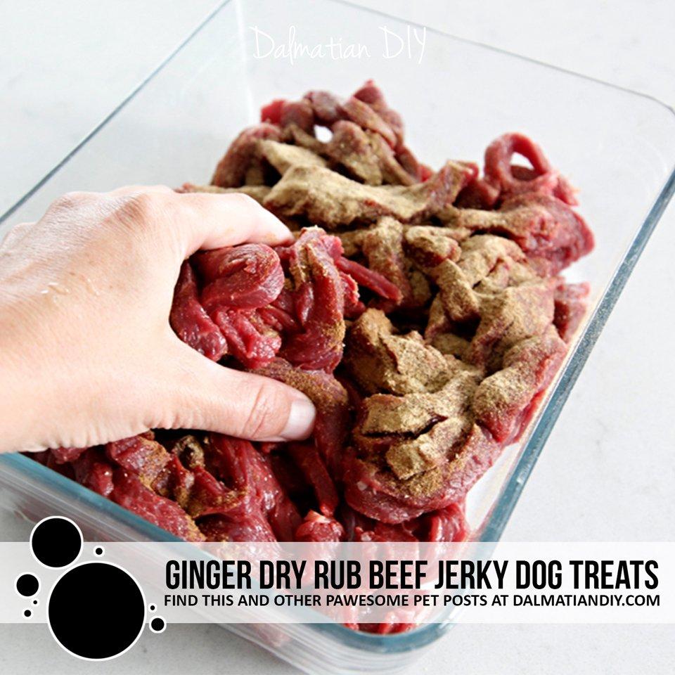Recipe for homemade ginger dry rub beef jerky dog treats
