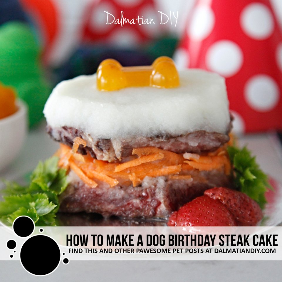 How to make a dog birthday cake with steak or meat instead of cake
